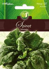 4550340  Spinat Matador winterhart Herbst- und Frühjahrsanbau Saatgut