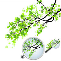 Home Decor Green Leaf Fresh Frosted Branch Wall Mural Window Glass Art Stickers