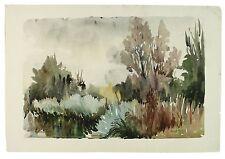 Si precipita sul fiume Whitewater Hampshire Paesaggio dipinto ad Acquerello Harrison
