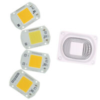 LED COB White Chip And Lens Reflector 50W 30W 20W 110V/220V F LED Flood Li wr