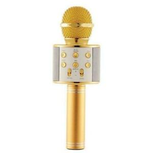 Perfect Pitch Karaoke Wireless Microphone and Recorder