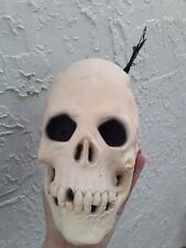 Amazing Original H Potter Skull Prop Weird Shop B&B