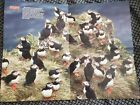 """Rare Vintage 1986 National Wildlife Federation Poster 19"""" x 14.5"""" Herd & Colony"""
