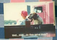 50 Postcards Little Lee Comic Trucking Do They Serve Dogs?