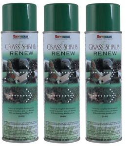 Seymour 20-602 Grass and Shrub Renew Paint, Pristine Green, 3/Pack