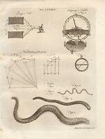1797 Georgiano Stampa ~ Immersione Ago Newtoniano Filosofia Nereis