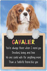 Dogs 3D Lenticular Lives Here Hang-Up Plastic Sign Cavalier Blenheim 15x22.5cm
