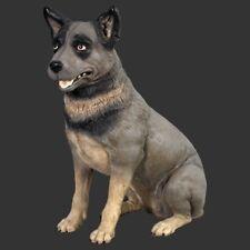 Life Size Blue Heeler Dog Model