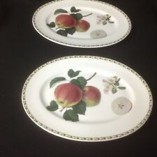 """QUEENS ROYAL HORTICULTURAL SOCIETY HOOKERS FRUIT  two 13"""" Platters APPLE"""