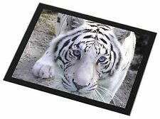 Siberian White Tiger Black Rim Glass Placemat Animal Table Gift, AT-14GP