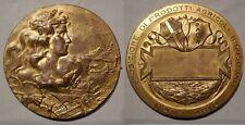 Medaglia esposizione prodotti agricoli Roma 1910