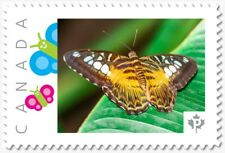 BUTTERFLY on leaf = postage stamp MNH Canada 2018 [p18-09-21]