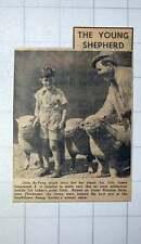 1949 Six-year-old James Langmead Jr Runcton Farm Near Chichester Annual Show