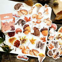 Autumn Forest Squirrel Journal Decorative Stationery Stickers Scrapbooking Album