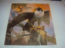 """Bart Forbes original lithograph print """" Peregrine Falcon """" limited edition"""