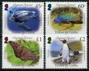 Tristan da Cunha Birds Stamps 2020 MNH Vagrant Species Turtles Penguins 4v Set