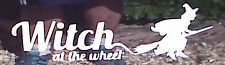Witch at the Wheel stickers/car/van/bumper/window/decal 5109 White