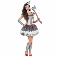 Tin  sc 1 st  eBay & Womenu0027s Sorcerer/Sorceress/Wizard Dress Costumes | eBay