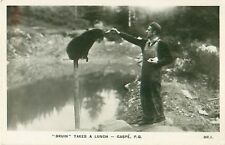 Bruin Takes A Lunch Gaspe P.Q. RPPC Postcard Made in England