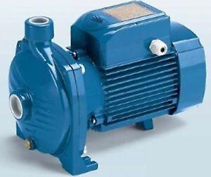 PEDROLLO CPM 158 Pompe Électrique Centrifuge Monophase 1HP 0,75KW 230V
