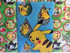 Pokemon Center Japan File Pikachu Summer Vacation 2014 Kuji Folder Card  (plush)