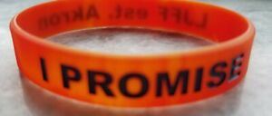 LeBron James Authentic LJFF I Promise Bracelet Space Jam 2 Edition, Very Rare