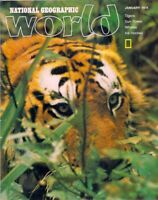 national geographic WORLD-JAN 1978-TIGERS.