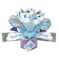 New Baby Boy Pop-Up Greeting Card Original Second Nature 3D Pop Up Cards
