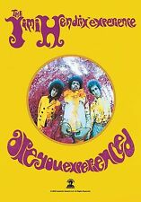 Jimi Hendrix Are You Exper... large fabric poster / flag   1100mm x 750mm (hr)