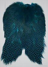 Teal Blue Guinea Chickabou Cape