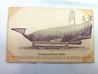 Vintage Postcard 1910s The Redondo Beach Whale Elks Lodge Reunion Los Angeles CA