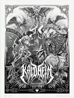 """Kaldheim store 18"""" x 24"""" official poster Mtg Magic the gathering promotional"""