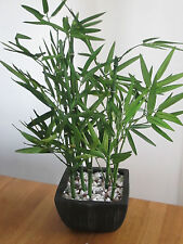 Artificial Deluxe Contemporary Bamboo Plant In Black Ceramic Pot & Stones  New