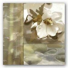 FLORAL ART PRINT Zen Elements III Donna Geissler