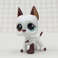 Rare Littlest Pet Shop LPS#577 Brown & White Great Dane FAKES Flower Eyes Puppy