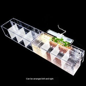 NEW Acrylic Aquarium Baby Betta Fish Tank LED Light Breeding Hatchery Box