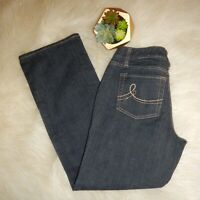 Ann Taylor LOFT Petite Womens Blue Dark Wash Curvy Boot Cut Jeans Size 4P