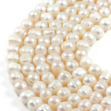"Freshwater Pearl  8-9mm Cream Pearl Potato  Jewellery Making Beads on 15"" Strand"