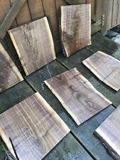 Thin Cut Black Walnut/ Shelf Slabs/ Cutting Board, Live- Natural Edge Lumber DIY