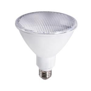 (4 Pack) Topaz 73716 LED PAR30 Light 75W Equivalent 5000K 11W 900LM 40DEG Beam