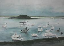 Swans and Geese on the Lakes Watercolour by Fenland Artist John Abbott 1998