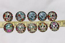 25x6mm Cabochon Half Round Dome Candy Skull Pattern Grateful Dead Crafts 10pc