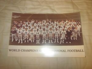 1981 Oakland Raiders NFL World Champions 8 1/2 X 13 1/2 Team Photo #1
