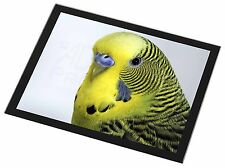 Yellow Budgerigar, Budgie Black Rim Glass Placemat Animal Table Gift, AB-51GP