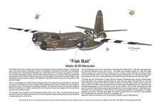 B-26 Flak Bait Poster, Aviation Art Print, Ernie Boyette