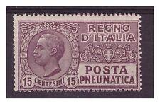 REGNO POSTA PNEUMATICA 1913 - Centesimi 15   Nuovo **