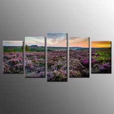 Framed Wall Art Home Decor Spring Flowers Stretched Canvas Painting Print-5pcs