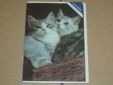 Lovely Tabby Cats In Basket Blank Greeting Card