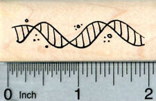 DNA Helix Rubber Stamp, Biological Science Series D32308 WM