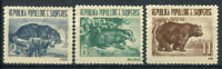 Albanien 1961 Mi. 627-629 Postfrisch 100% Tiere, Wildtiere